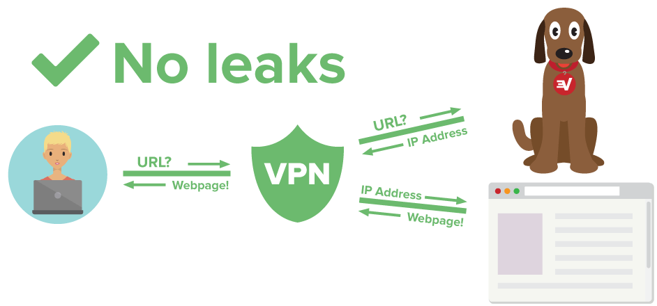 Diagram showing VPN user protected from DNS leaks
